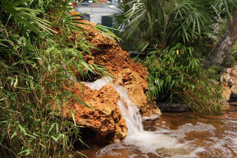 Création de bassins avec cascade BORDEAUX 33