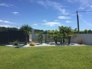 Plantations de palmiers exotiques BORDEAUX en GIRONDE